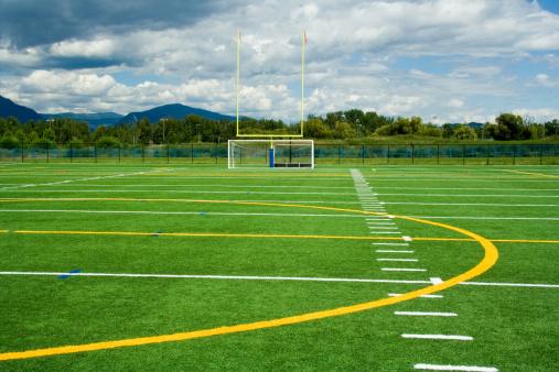 Goal Post「Artificial sport turf」:スマホ壁紙(5)