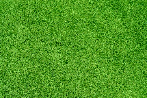 Grass「artificial grass」:スマホ壁紙(10)