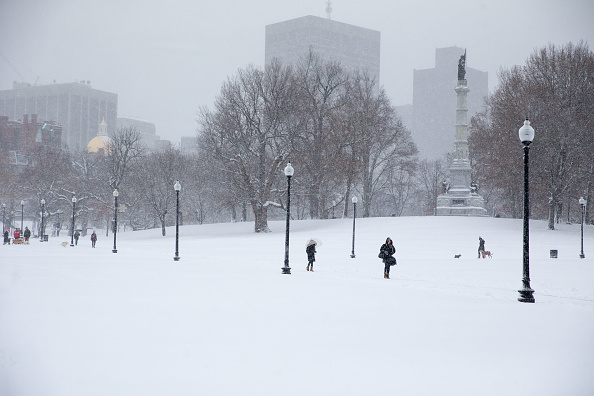 Snow「First Winter Storm Of The Season Hits Northeast」:写真・画像(12)[壁紙.com]
