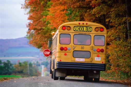 School Bus「School bus on country road」:スマホ壁紙(18)