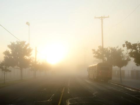 Bus「School bus on a foggy morning」:スマホ壁紙(7)