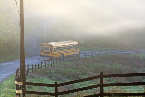 Fog「School Bus on a Misty Fall Morning」:スマホ壁紙(6)