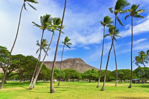 オアフ島「Diamond Head in Kapiolani regional park」:スマホ壁紙(15)