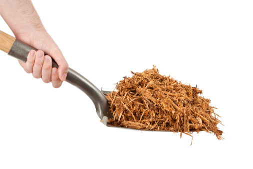 Human Hand「Shovel Full of Cypress Mulch」:スマホ壁紙(17)