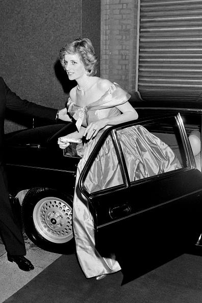 Vehicle Door「Princess Diana」:写真・画像(18)[壁紙.com]