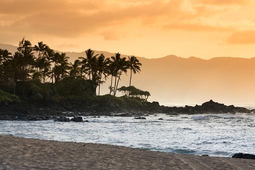 オアフ島「ハワイ ・ オアフ島ワイメア湾ビーチ ・ パーク」:スマホ壁紙(0)