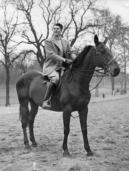 Horse「Reagan Riding」:写真・画像(0)[壁紙.com]