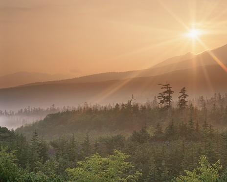 Daisetsuzan Volcanic Group「The Sun Rising Over Mt. Daisetsu and a Forest. Biei, Hokkaido, Japan」:スマホ壁紙(18)