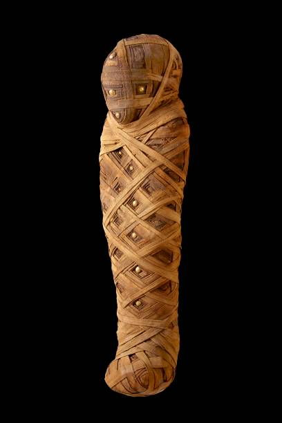 Mummified Child:ニュース(壁紙.com)