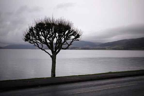 Overcast「Scottish Island Of Bute Prepares To Welcome Syrian refugee families」:写真・画像(14)[壁紙.com]