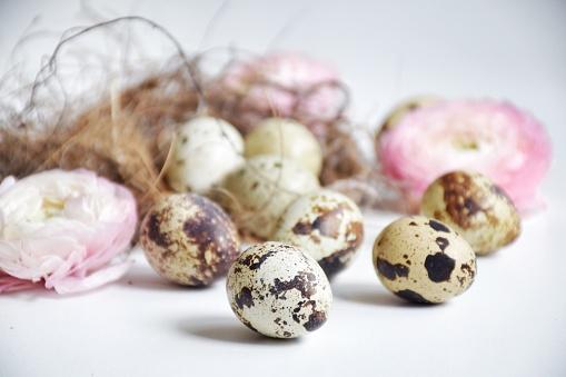 イースター「Quail eggs in a birds nest with ranunculi  flowers」:スマホ壁紙(12)