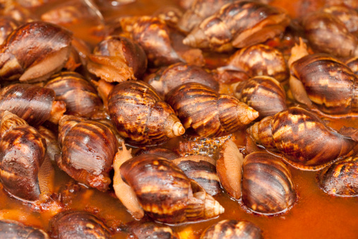 カタツムリ「Chinese traditional snack cooked snails」:スマホ壁紙(1)