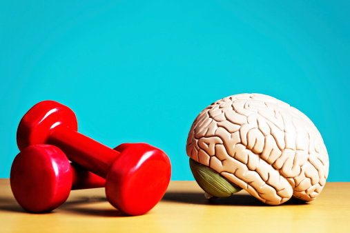 Fitness model「Exercise keeps body and mind fit: model brain with barbells」:スマホ壁紙(1)