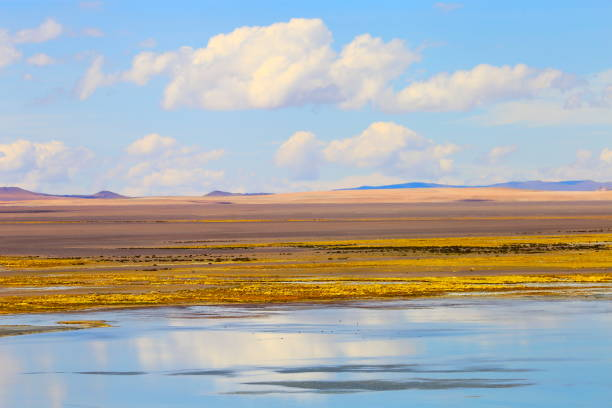 Laggon, lake reflection - Bolivian Andes altiplano and Idyllic Atacama Desert, Volcanic landscape panorama – Potosi region, Bolivian Andes, Chile, Bolívia and Argentina border:スマホ壁紙(壁紙.com)