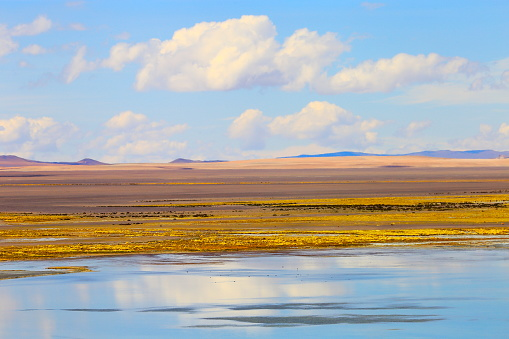 Bolivian Andes「Laggon, lake reflection - Bolivian Andes altiplano and Idyllic Atacama Desert, Volcanic landscape panorama – Potosi region, Bolivian Andes, Chile, Bolívia and Argentina border」:スマホ壁紙(13)