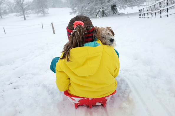 Sledding「Heavy Snow Hits The UK」:写真・画像(0)[壁紙.com]