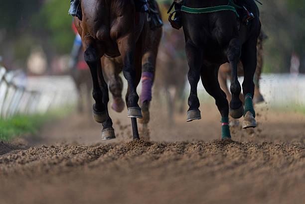 Horse racing detail, hooves on all weather track:スマホ壁紙(壁紙.com)