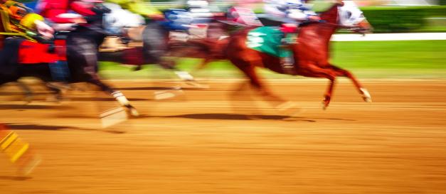Horse「horse racing」:スマホ壁紙(18)