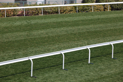 Sha Tin「Horse Racing Track」:スマホ壁紙(13)