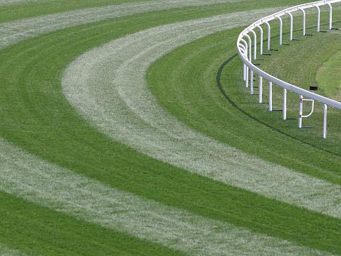 Horse「Horse Racing Track」:スマホ壁紙(14)