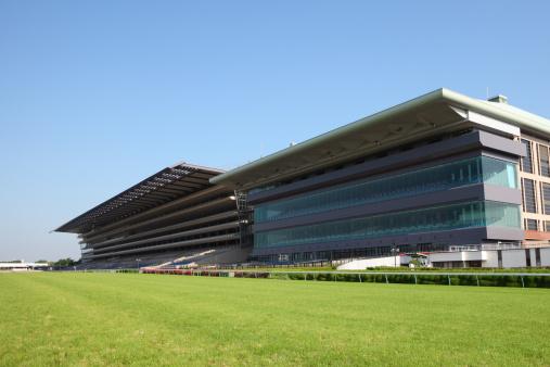 Horse「Horse Racing Track」:スマホ壁紙(8)