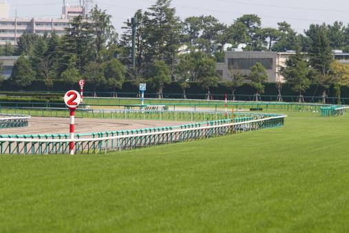 Horse「Horse Racing Track」:スマホ壁紙(18)