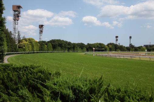 Horse「Horse Racing Track」:スマホ壁紙(0)