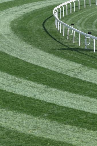 Horse「Horse Racing Track」:スマホ壁紙(10)