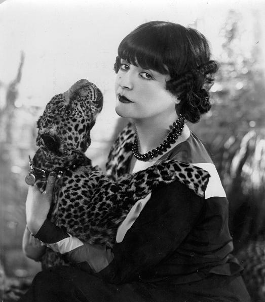 動物「Maud Loty」:写真・画像(16)[壁紙.com]