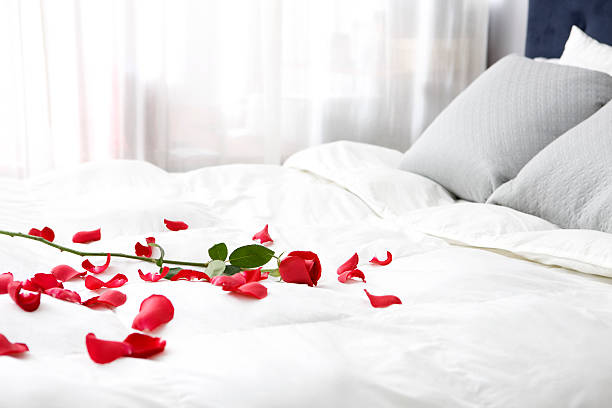 Bedroom with Single Rose and Petals on Bed, Copy Space:スマホ壁紙(壁紙.com)