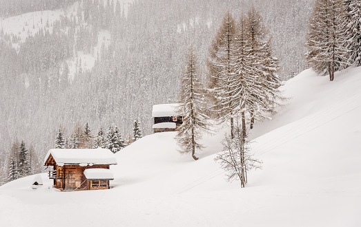 Swiss Alps「Swiss chalets in the snow」:スマホ壁紙(14)