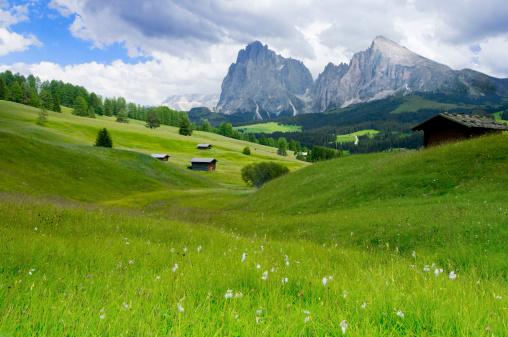 ヨーロッパアルプス「di Siusi Alpe」:スマホ壁紙(19)