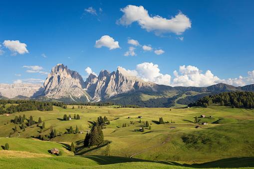 Langkofel「Alpe di Siusi, South Tyrol, Italy」:スマホ壁紙(18)