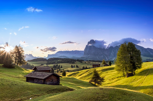 Pasture「Alpe di Siusi, South Tyrol, Italy」:スマホ壁紙(11)