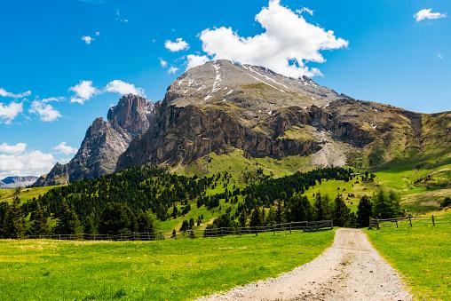 European Alps「Alpe di Siusi in Trentino Alto Adige」:スマホ壁紙(7)