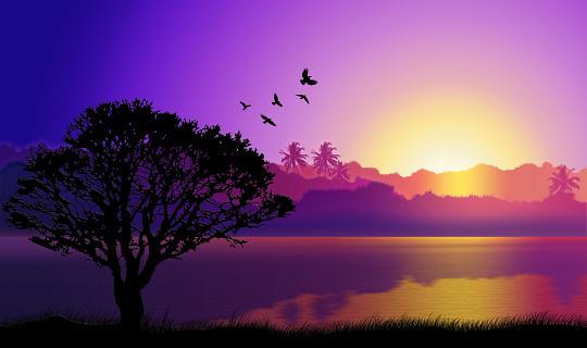 Sri Lanka「Sunlight lake of Sri Lanka」:スマホ壁紙(16)