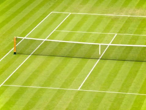 テニス「芝生のテニスコート」:スマホ壁紙(10)