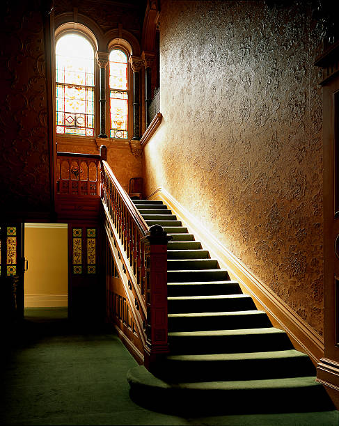 Sunlit interior carpeted staircase:スマホ壁紙(壁紙.com)