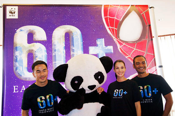 World Wildlife Fund「Launch Of Earth Hour Blue & Announcement Of Spider-Man As The 2014 Earth Hour Global Ambassador」:写真・画像(3)[壁紙.com]