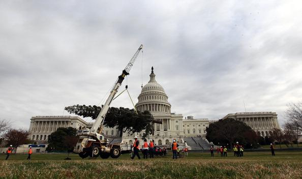 Win McNamee「Capitol Christmas Tree Arrives In Washington」:写真・画像(11)[壁紙.com]