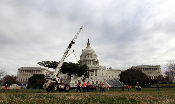 Stanislaus National Forest「Capitol Christmas Tree Arrives In Washington」:写真・画像(1)[壁紙.com]