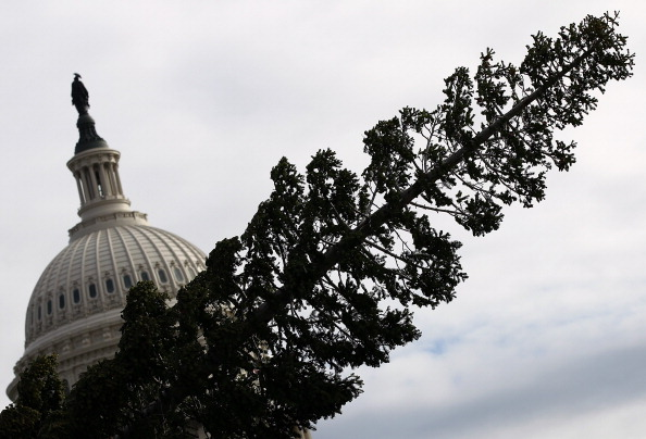 Stanislaus National Forest「Capitol Christmas Tree Arrives In Washington」:写真・画像(13)[壁紙.com]