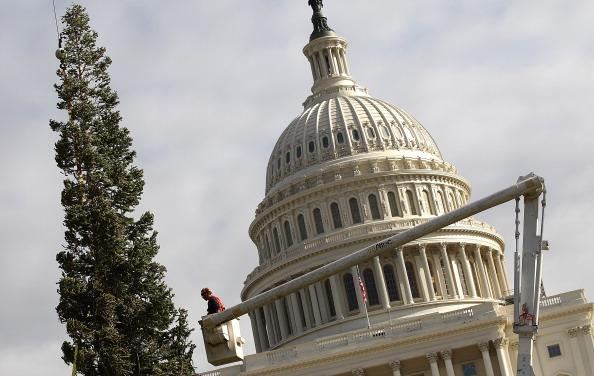 Stanislaus National Forest「Capitol Christmas Tree Arrives In Washington」:写真・画像(11)[壁紙.com]