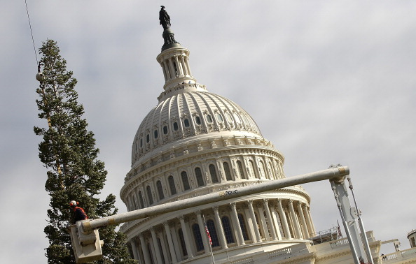 Stanislaus National Forest「Capitol Christmas Tree Arrives In Washington」:写真・画像(15)[壁紙.com]