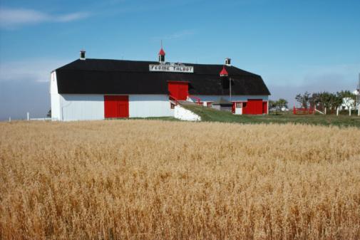 Eastern Townships「Rural farm house with grains field」:スマホ壁紙(16)
