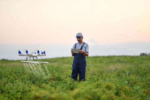 田畑「ドローンを使用して彼の作物を散布農家」:スマホ壁紙(16)