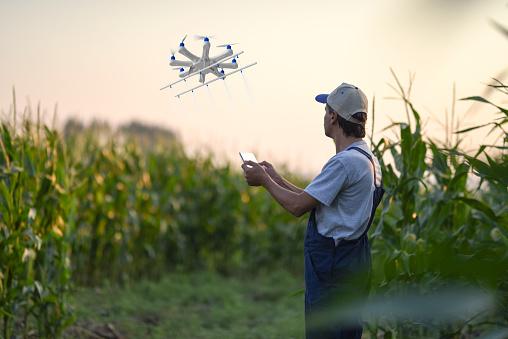 田畑「ドローンを使用して彼の作物を散布農家」:スマホ壁紙(10)
