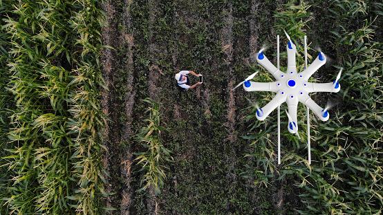 俯瞰「ドローンを使用して彼の作物を散布農家」:スマホ壁紙(11)