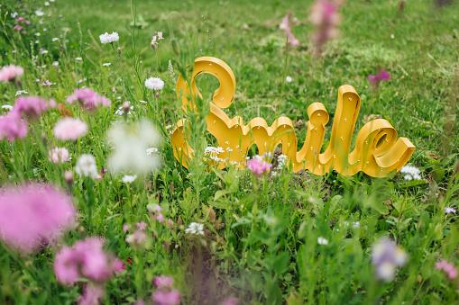 笑顔「The word Smile on field of flower」:スマホ壁紙(18)