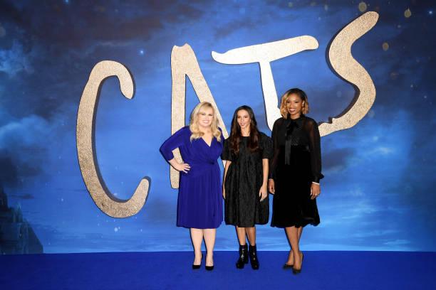 """Cats"" - Photocall:ニュース(壁紙.com)"